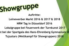 Webseite-Showgruppe